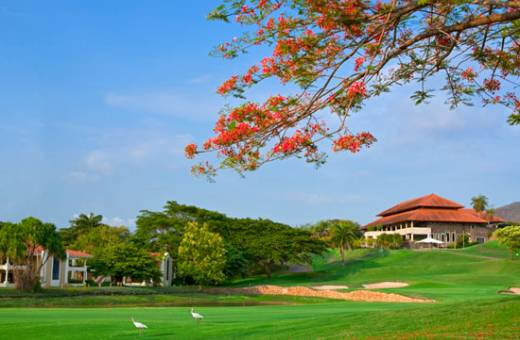 Hotel Westin Golf Resort & Spa - 5*ALL INVLUSIVE