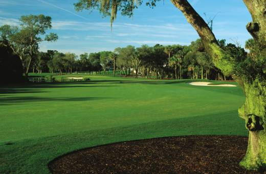Kiawah Island Golf Club | Turtle Point Course