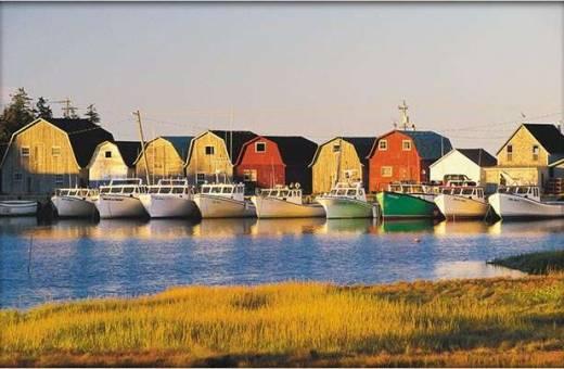 Province du  Nouveau Brunswick - Autotour du Nord au Sud