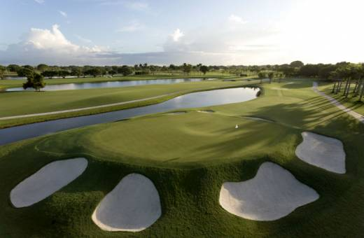 Doral Golf Club | Red Tiger