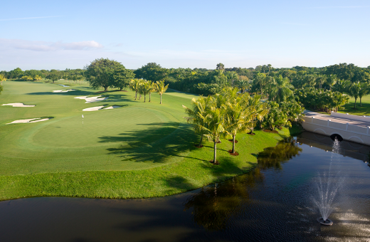 Doral Golf Club | Golden Palm