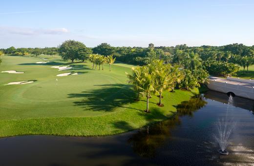 Doral Golf Club   Golden Palm