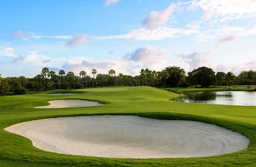 Doral Golf Club   The Silver Fox