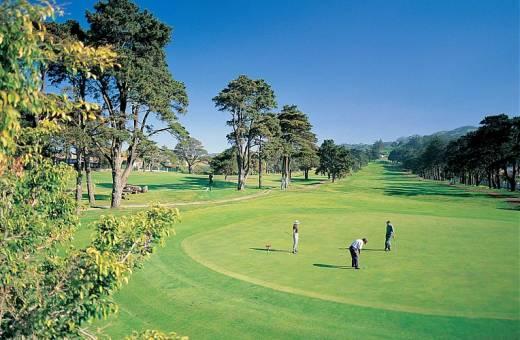 Real Golf Club