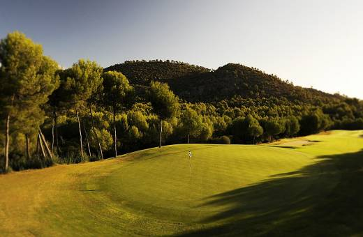 Son Quint Golf Club