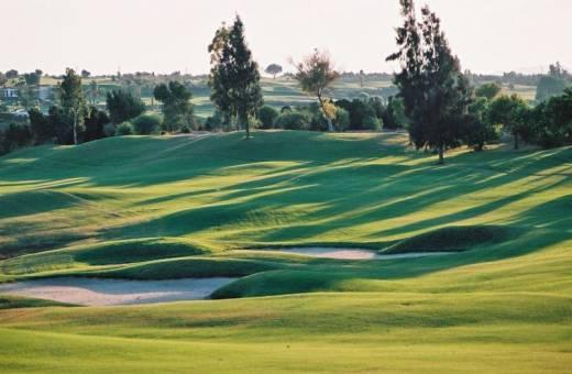 Golf Citrus | Les Oliviers