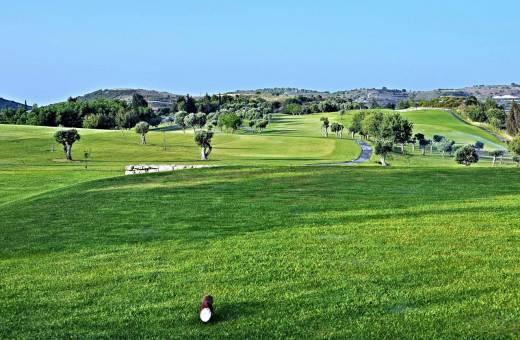 Minthis hills Club