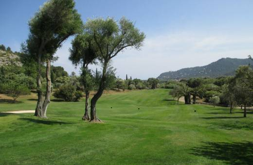 CANYAMEL GOLF COURSE