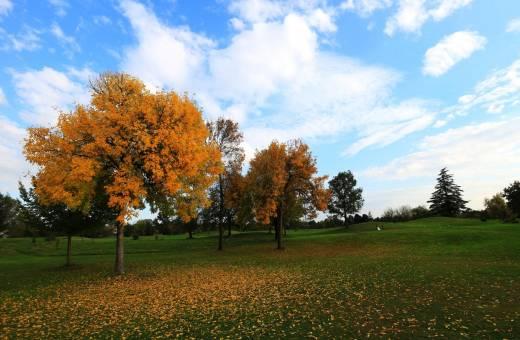 Ca della Nave Golf Club